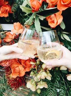 Cheers-Shot
